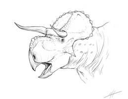 Nasutuceratops by LlamaTHEDragon