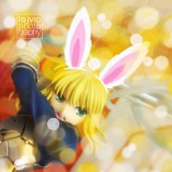 Saber-Bunny
