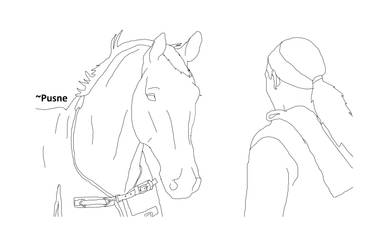 Horse and girl lineart by Pusne