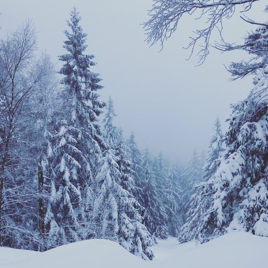Wintergefuehl by Noirerora
