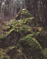 Mount Moss by Noirerora