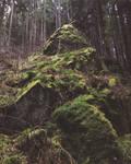 Mount Moss