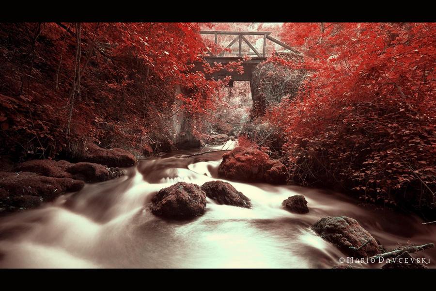 a stream...