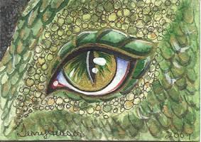 Dragon Eye ACEO by artwoman3571