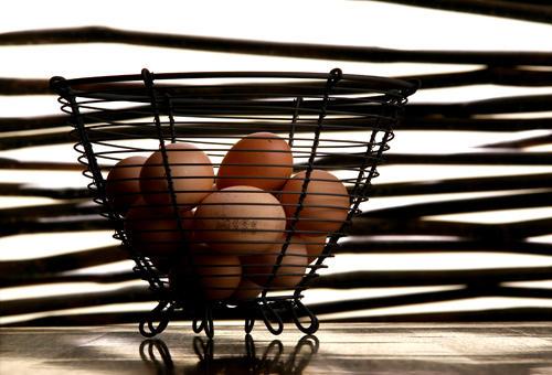 Eggs in basket by oryans
