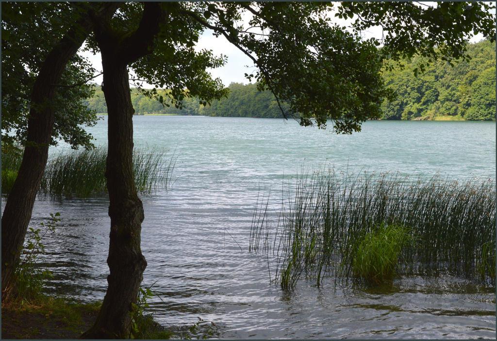 Liepnitzsee 4 by ghardegh