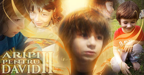 WINGS FOR DAVID II - Facebook Fundraiser Cover Art