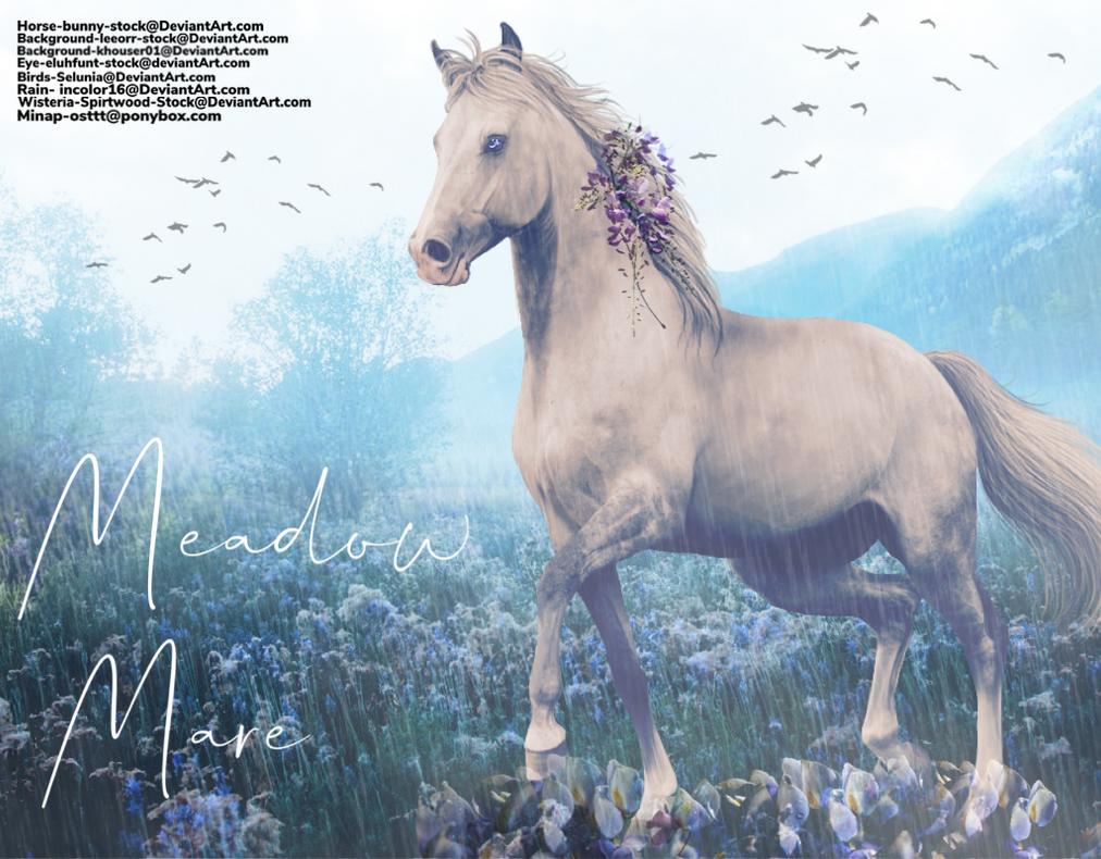 Meadow Mare