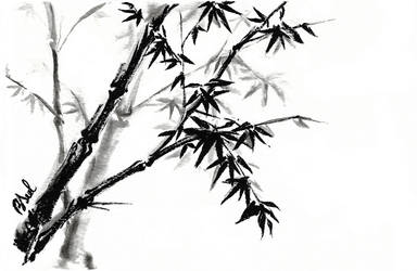 Bamboo by BiSeol