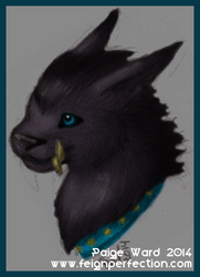 Worgen Cat Druid by sweetmorpheus
