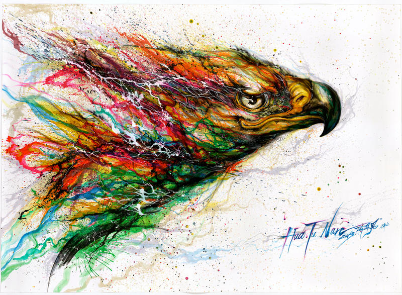 Color Eagle by huatunan