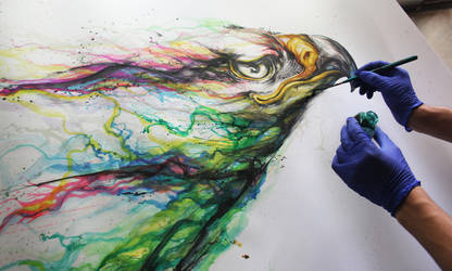 Color Eagle by huatunan