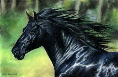 Black Velvet by ZsofiaGyuker