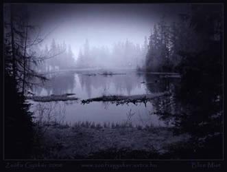 BLUE MIST by ZsofiaGyuker