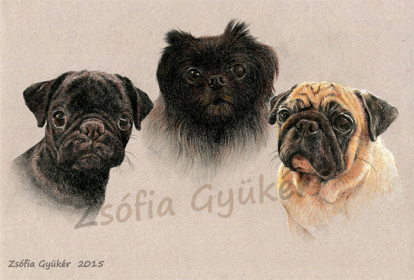 TRIPLE portrait  commission 1 by ZsofiaGyuker
