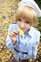 Hetalia - Golden Afternoon by Auris-Lothol