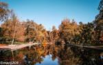 Fall's Reflection by macij209