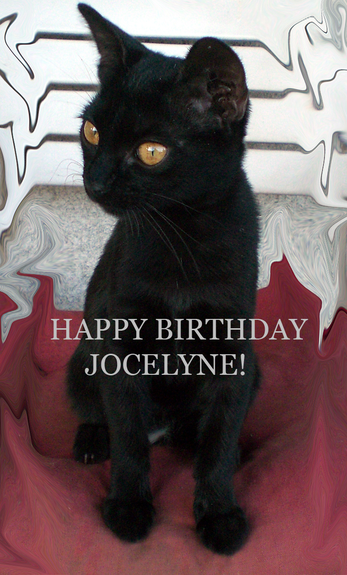 Happy birthday Jocelyne! by Hevonie