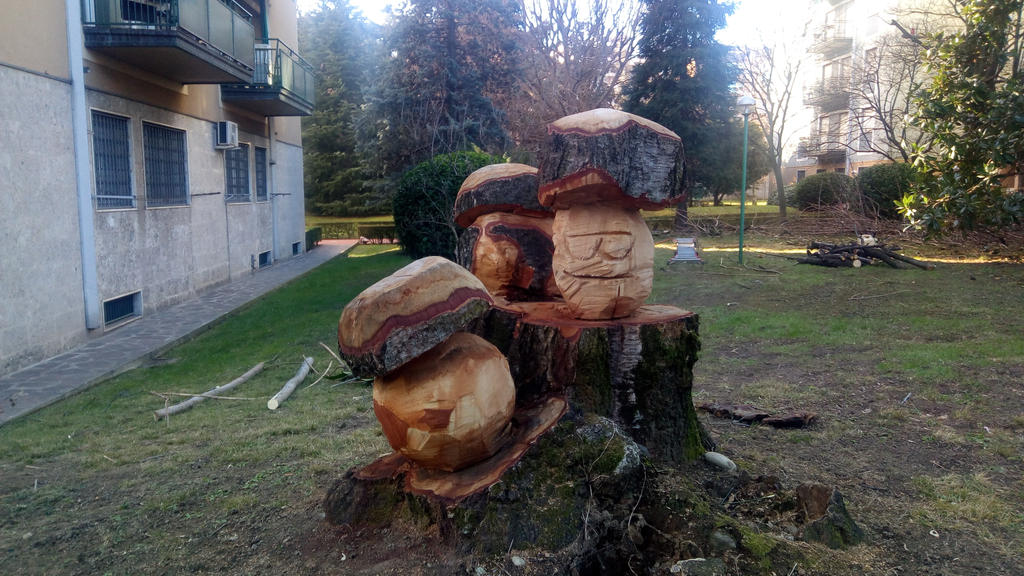 Sculpted wood mushroom by PaolaCamberti