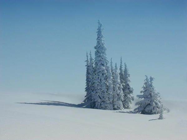 Winter by FrozenStardust