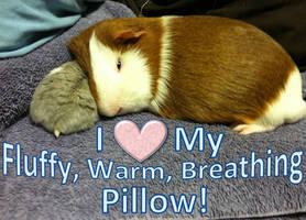 Pillow Butt! by zest1513