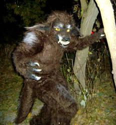 Alfie Howl In His Natural Habitat by InstilledPhear