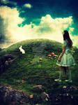 Wish I Could Find Wonderland