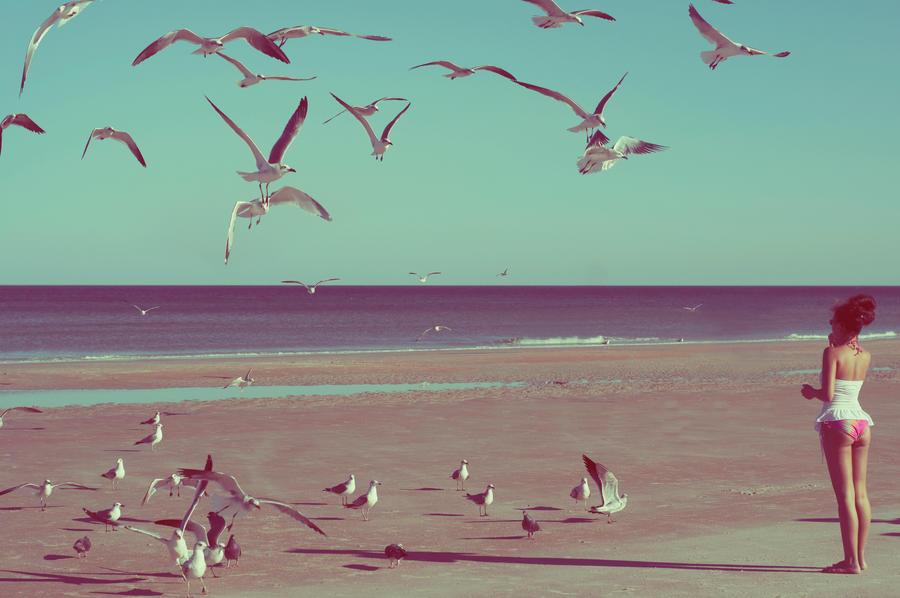 Daytona Beach by Vinyl-Disco