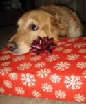 Merry Christmas by vampireFreak1015