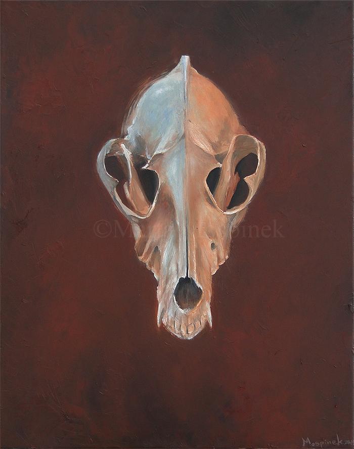 Skull by Mospineq