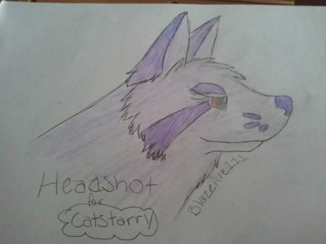 Catstarry's Headshot