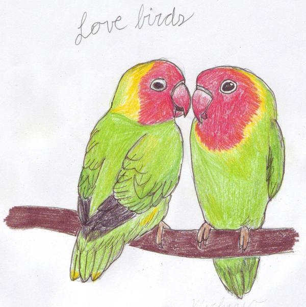 Love bird couple by PhoenixWingedSamurai on DeviantArt
