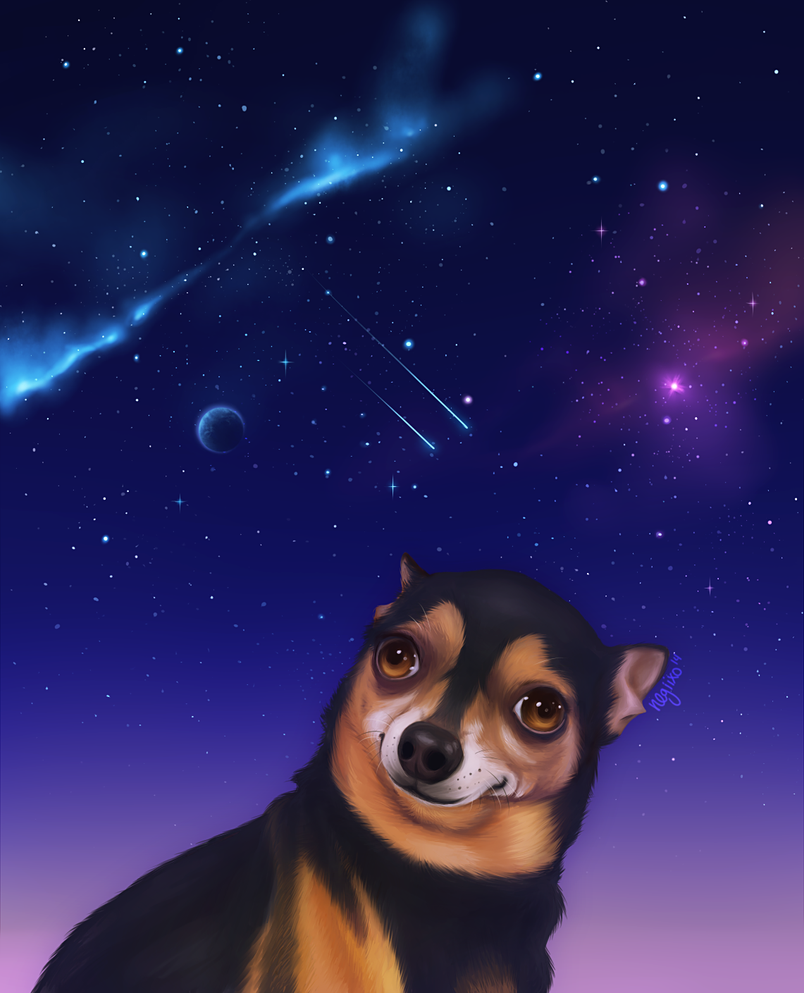 Spaceshakedogplz by negiixo