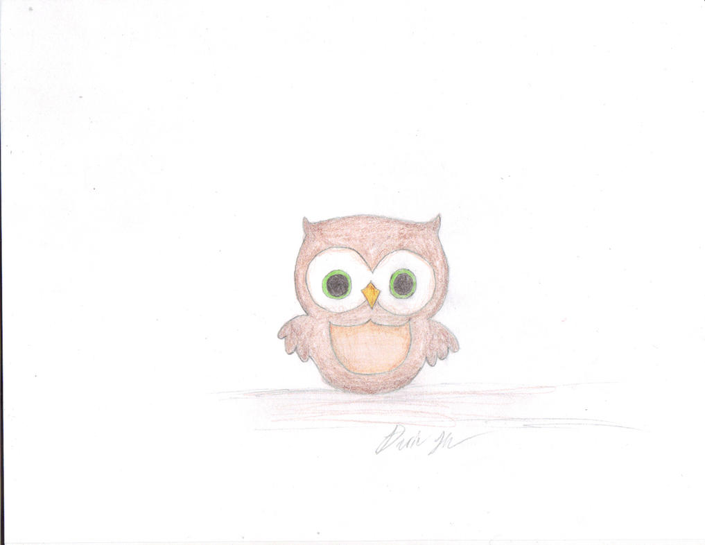 Image Result For Owl Drawing
