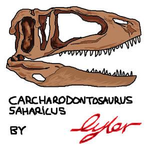 Carcharodontosaurus saharicus Skull Reconstrucion