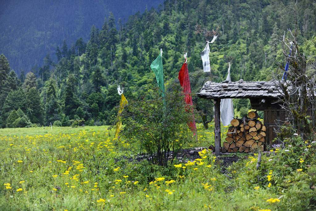 Linzhi China  City pictures : Linzhi, Tibet, China by laogephoto on DeviantArt