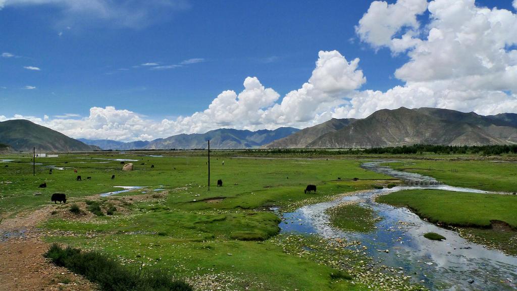 Linzhi China  city photos gallery : Linzhi, Tibet, China by laogephoto on deviantART