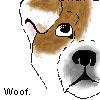 Woof by RachelButton