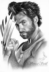 Wolverine by VencaSeitl