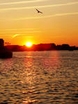 Sunset at the harbor Rostock (4)