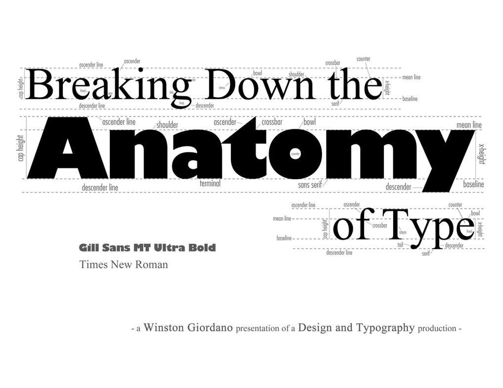 typography breakdown infographic by dubgee on deviantart
