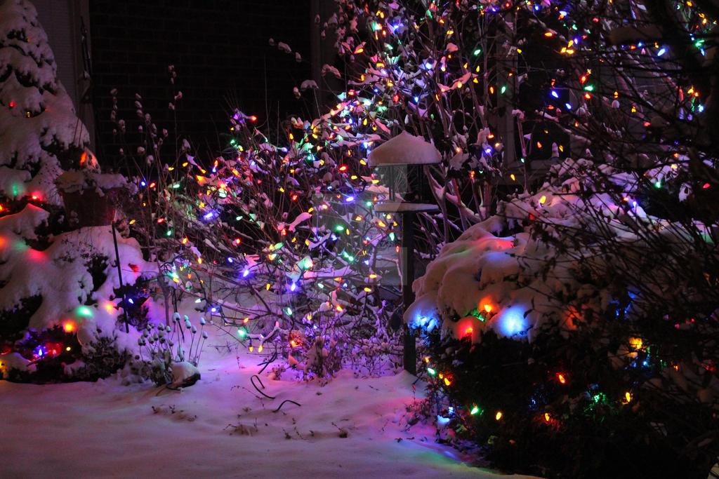 Lights by xX-RawrImAKitten-Xx