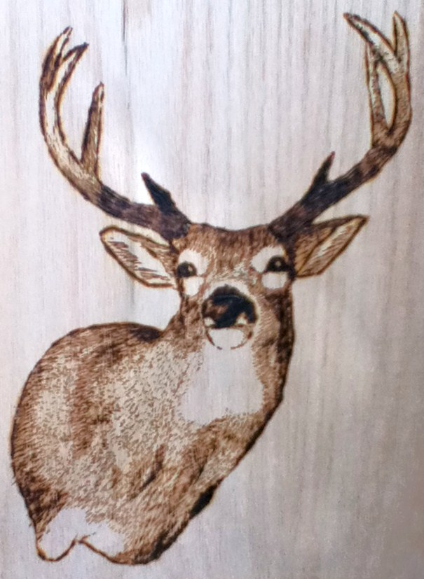 wood burn deer head design by kitsunefire7 on DeviantArt