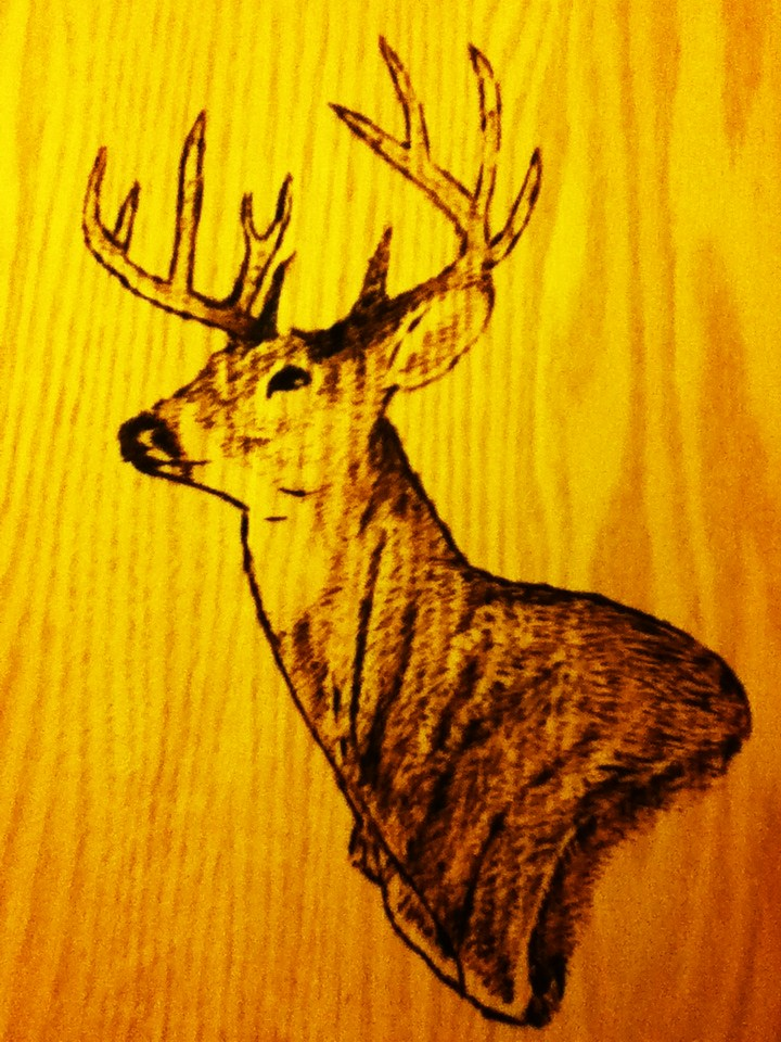 wood burn deer head design 3 by kitsunefire7 on DeviantArt