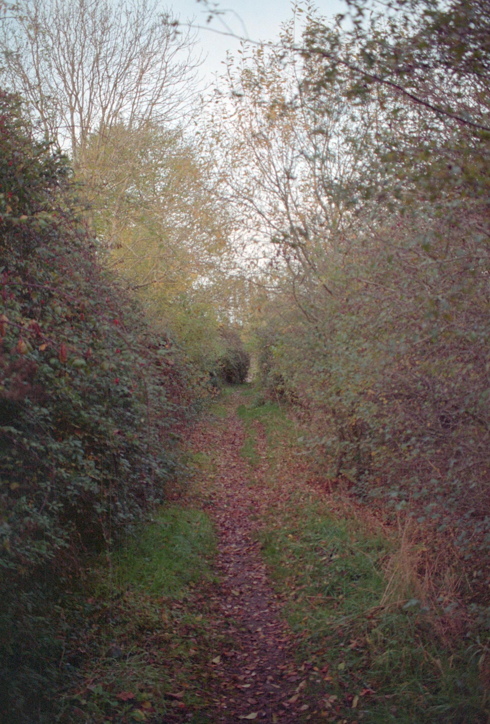 Contradictory path