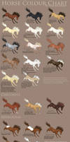Horse Colour Chart vs 2