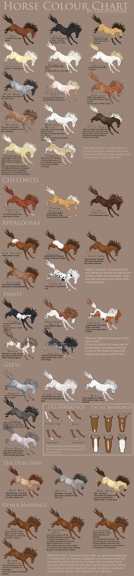 Horse Colour Chart vs 2 by Gaurdianax