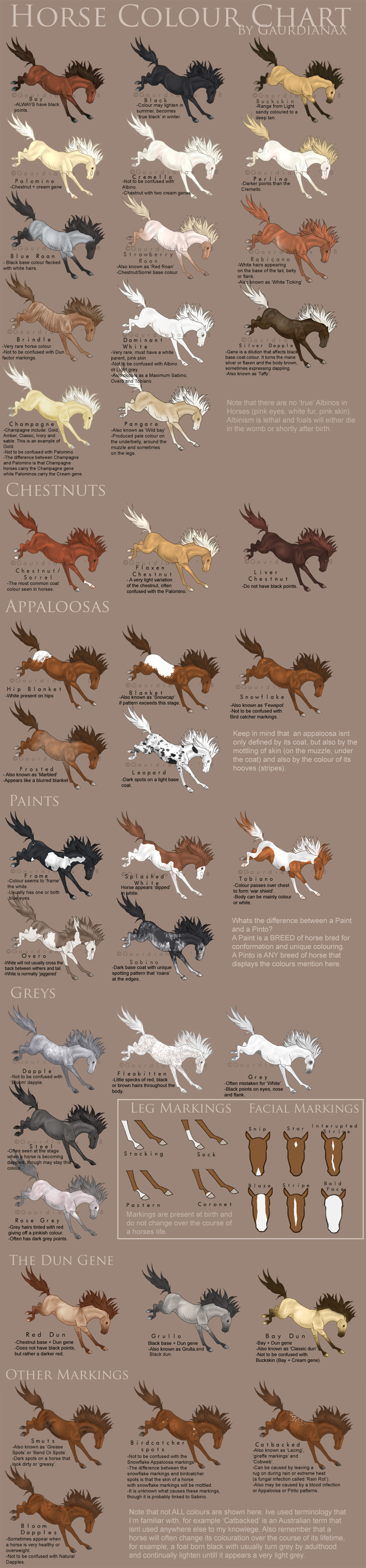 Horse colour chart vs 2 by gaurdianax on deviantart horse colour chart vs 2 by gaurdianax nvjuhfo Choice Image