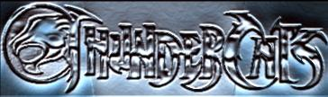 thundercats by BleedingCrowe