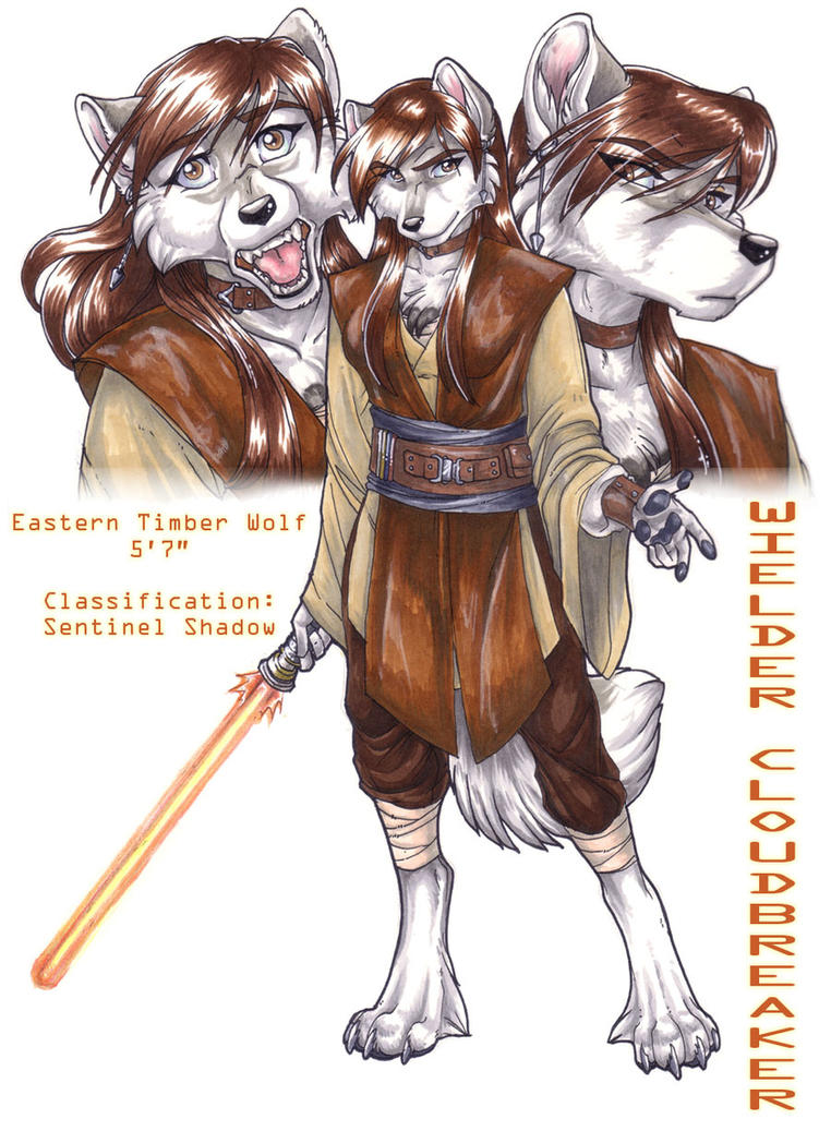 Wielder Cloudbreaker Jedi Reference Sheet by wielderofthewind